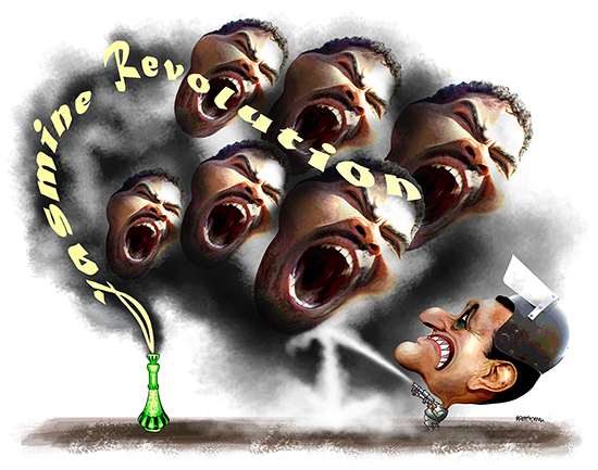genie out of bottle as protesters in Egypt topple President Mubarak as part of Jasmine Revolution