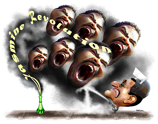 illustration about the Jasmine Revolution and the Egyptian uprising in which crowds defied tear gas and forced President Mubarak to resign