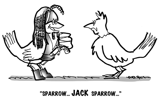 B&W cartoon showing two birds, with one dressed as Jack Sparrow, the movie pirate character