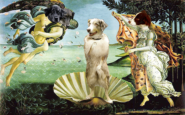 parody illustration of Botticelli's Birth Of Venus painting, shows a dog named Ruby Red substituted for Venus, and Blue, Indigo, and Ginger dog heads substituted for other three people heads in painting, result used as Tremendous Books cover