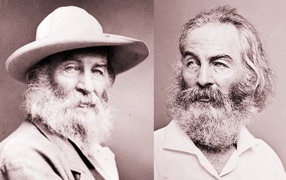 two photographs of famous American poet Walt Whitman showing him as an older man with a long white beard