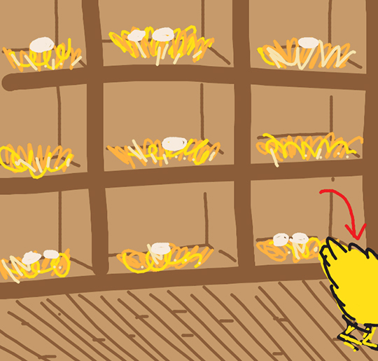 Draw Something image for word CHICKEN showing chicken coop with nests filled with eggs and part of chicken