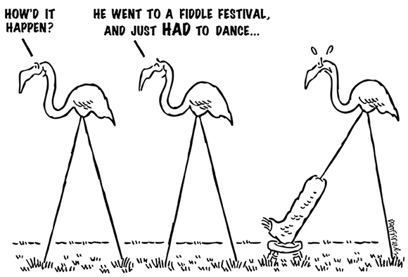 cartoon showing three lawn ornaments pink flamingos one has his leg in a cast how did it happen he went to fiddle festival and just had to dance broke his leg