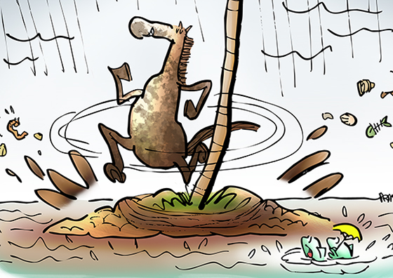 detail image from cartoon inspired by Kentucky Derby horse on desert isle running around palm tree in rain splashing mud, fish observing that some horses run well on muddy track