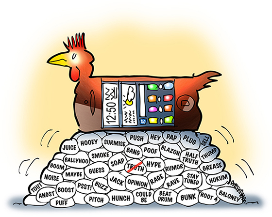 chicken as smartphone mobile phone with display screen sitting on pile of eggs representing rumor, innuendo, gossip, speculation, hearsay, and elusive truth, to show Twitter and social media not good at communicating facts