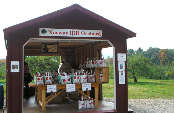Norway Hill Orchard in Hancock, New Hampshire where you can buy ready picked apples or go out and pick your own apples