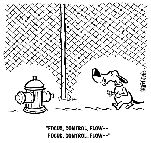 dog walking toward fire hydrant to urinate, saying focus, control, flow