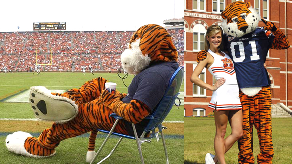 Auburn University mascot Aubie the Tiger watching football game and standing with cheerleader
