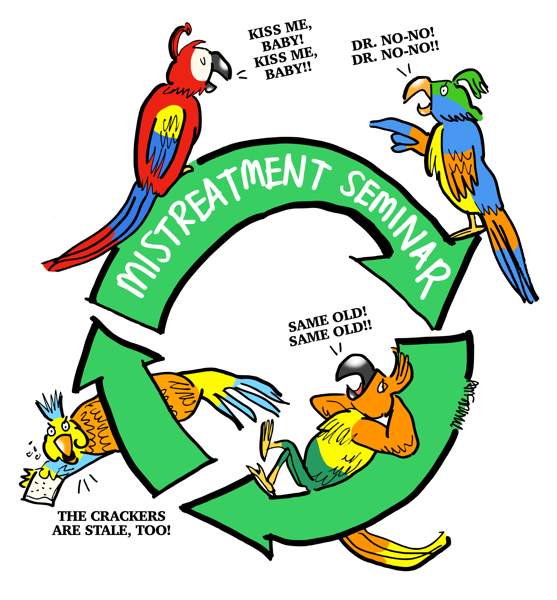 parrots recycling symbol same old discussions leading nowhere at medical mistreatment seminar